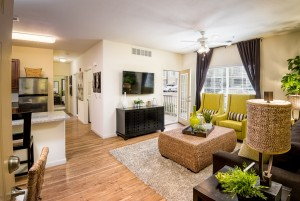 Saratoga Springs Apartments for Rent