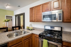 1 bedroom apartments for rent in Saratoga Springs UT